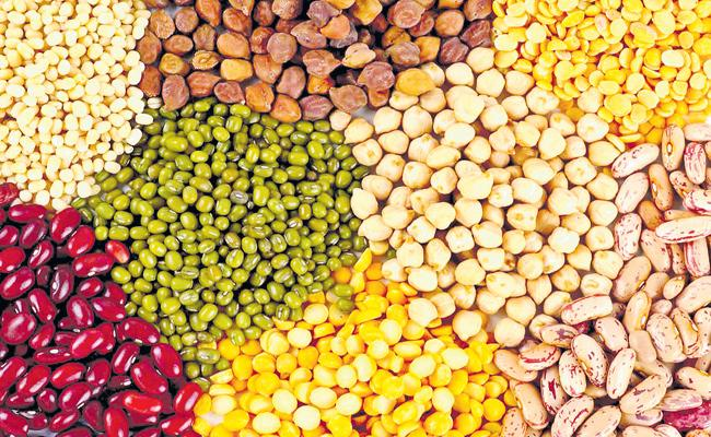 Do not allow quality seed says Department of Agriculture - Sakshi