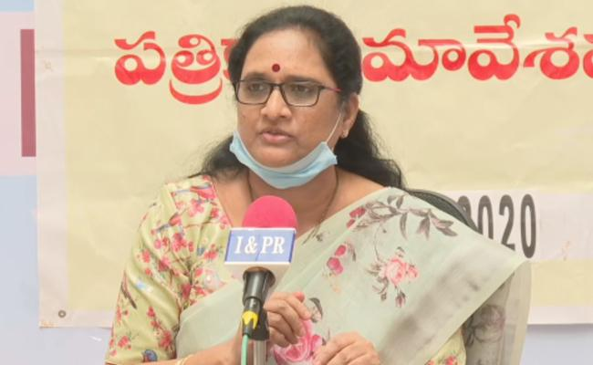 Vasireddy Padma Talks In Press Meet Over Domestic Violence Cases - Sakshi