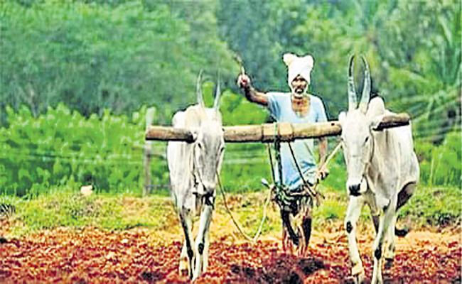 CM YS Jagan to Inaugurate 10641 Rythu Bharosa Centres 30th May - Sakshi