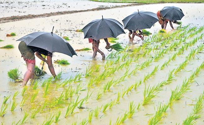 Telangana Farmers Keeping More Expectations On Raining Season - Sakshi