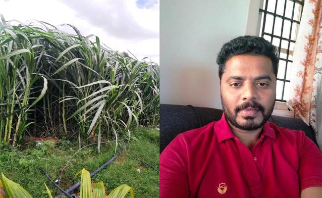 Software Engineer Become Farmer in Lockdown Time Kuppam - Sakshi
