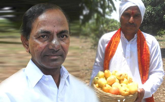 Former Give Telangana Apples To CM KCR In Pragathi Bhavan - Sakshi