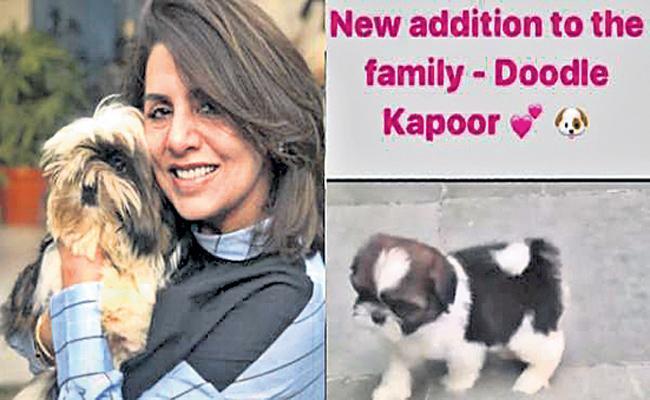 Neetu Kapoor Daughter Gift Pet Dog to Her Mom Divert Depression - Sakshi