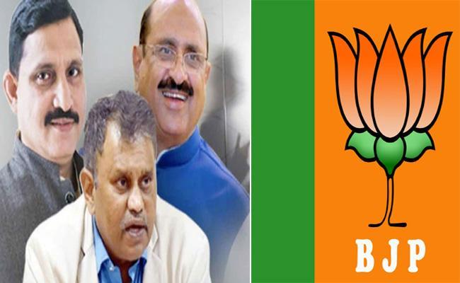 BJP Discontent On AP BJP Leaders Meeting With Nimmagadda Ramesh - Sakshi
