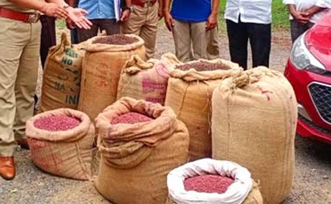Nalgonda Police Arrested Fake Seed Sellers - Sakshi