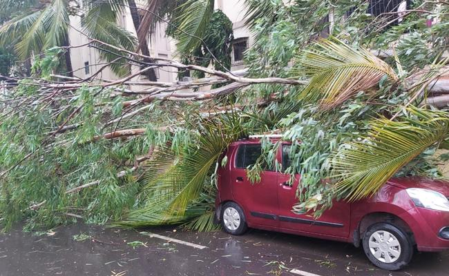 Nisarga Cyclome Strikes At Alibaugh Near Mumbai - Sakshi
