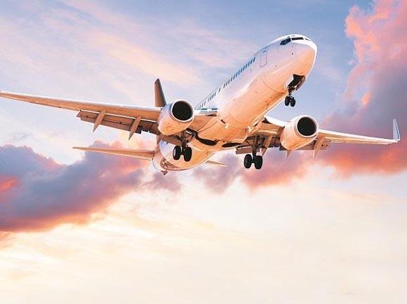 International Passenger Flights To Resume Operations In A Phased Manner - Sakshi