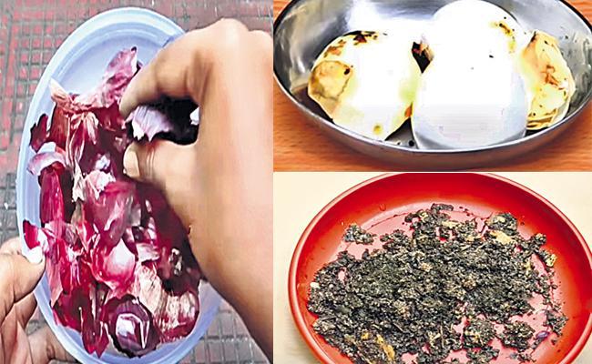Uses Of Onion Hull - Sakshi