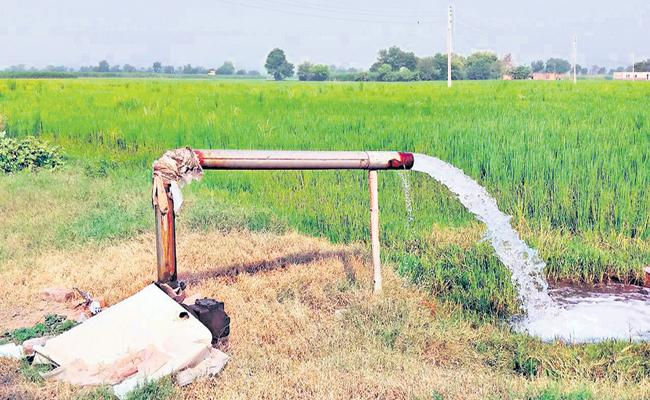 AP Govt Record in free electricity for agriculture - Sakshi