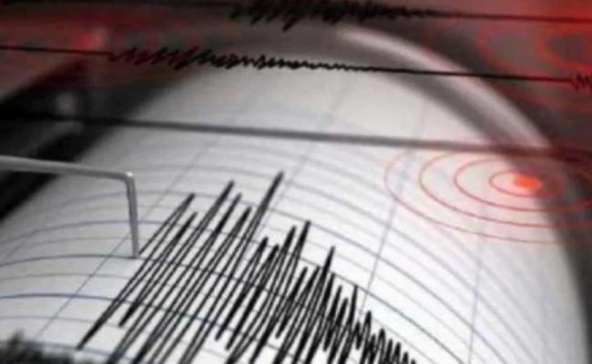 Earthquake in Delhi - Sakshi