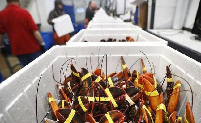 China Temporarily Bans Food Imports After Coronavirus Detected On Shrimp - Sakshi