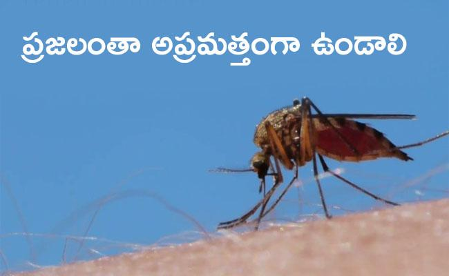 Myanmar Government Issues Alert To Prevent Dengue Fever - Sakshi