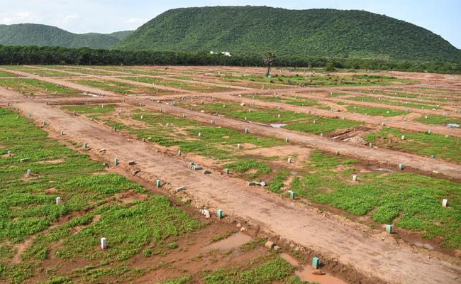 Land Ready For Distribute Poor People in Vijayawada - Sakshi