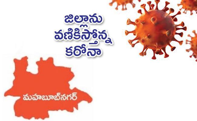 Coronavirus Red Alert in Mahabubnagar - Sakshi