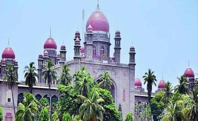 Telangana High Court Questioned KCR Govt Over Niloufer Hospital - Sakshi
