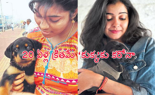 Coronavirus From Dogs Hair to Humans Special Story - Sakshi