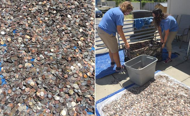 North Carolina Aquarium Collect Gallons Of Wish Coins To Pay Bills - Sakshi