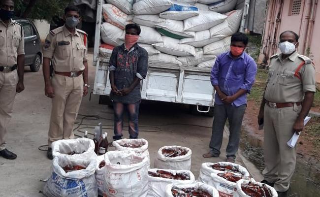 Alcohol Smuggling Nalgonda to Andhra Pradesh Gang Arrest - Sakshi