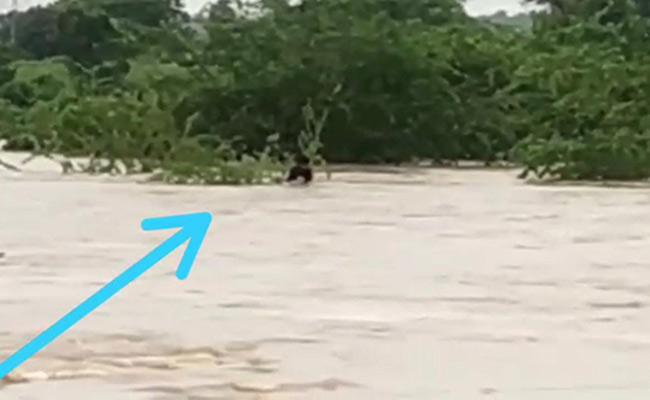 Lorry Driver Missing In River In Siddipet District - Sakshi
