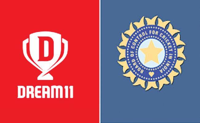 BCCI announce Dream11 as Title Sponsor for IPL 2020 - Sakshi