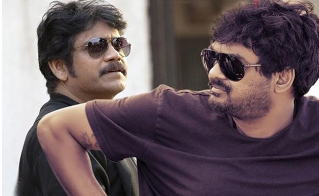 Puri Jagannadh to team up with Nagarjuna  Akkineni - Sakshi