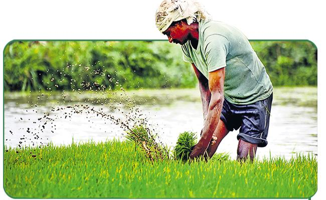 More than half of the total area of AP is already under Crop Cultivation - Sakshi
