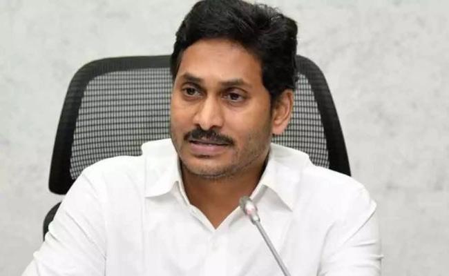 AP CM YS Jagan Mohan Reddy Gave Green Signal To New Univesity Establish - Sakshi