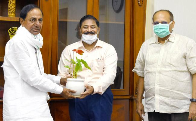 C Parthasarathy Appointed As Telangana State Election Commissioner - Sakshi