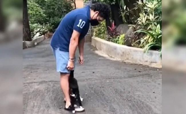 Sachin Shares Adorable Pet Cat Video Which Hailed By Fans - Sakshi