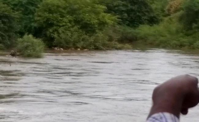 100 Goats And Sheep Were Washed Away In Bhainsa  river    - Sakshi