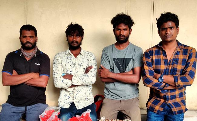 Task Force Police Seize 800 KG Ganja In Vijayawada - Sakshi