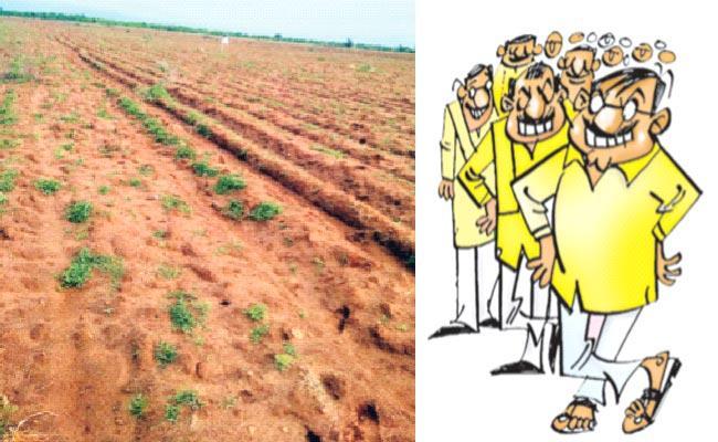 Eye Of TDP Leaders On Government Lands - Sakshi