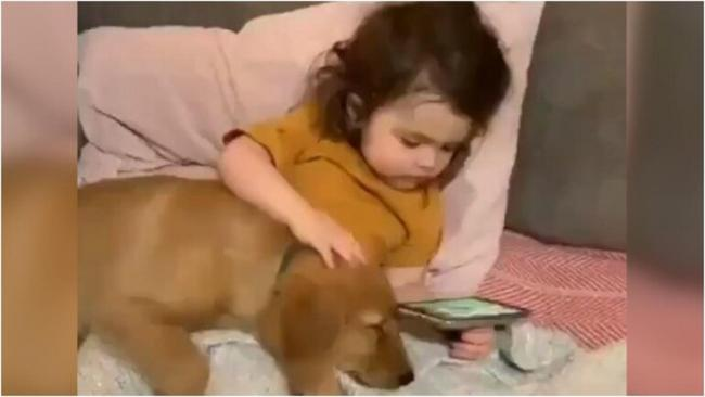 Little Girl Watches Film With Pet Dog in Adorable Video - Sakshi