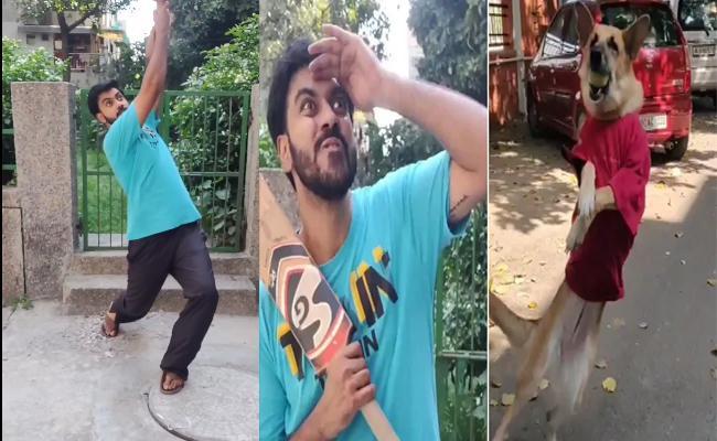 Dogs Playing Street Cricket Viral Video - Sakshi