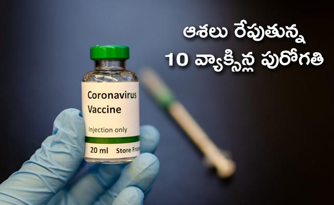 Covid-19 vaccines updates on Global pharma companies - Sakshi
