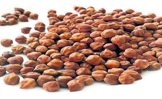 Bengal gram seed distribution begins - Sakshi