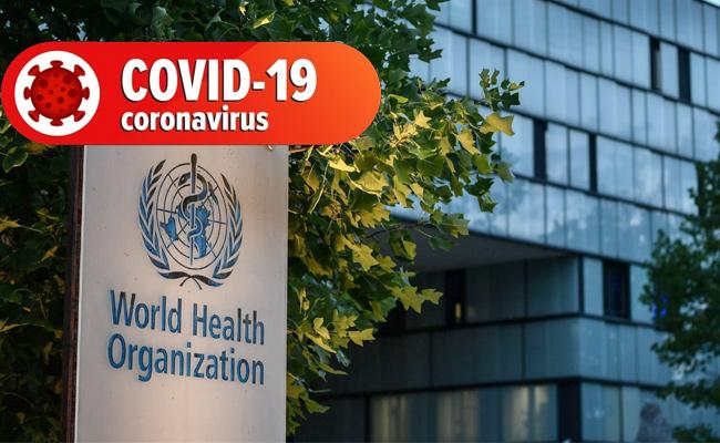 Global Covid-19 death toll could hit 2 million before vaccine in wide use - Sakshi