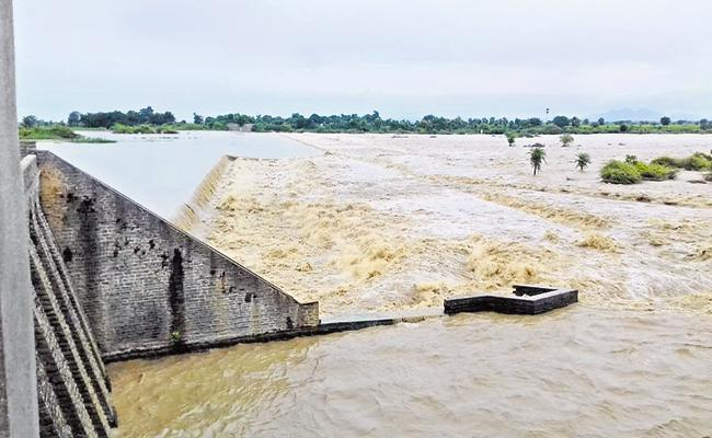 Damage to crops in many areas with heavy rainfall in AP - Sakshi