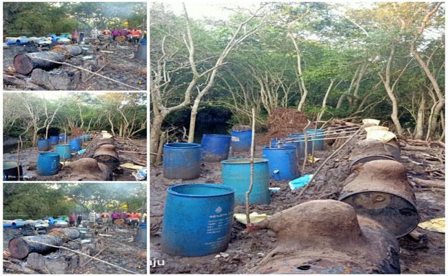 SEB Attacks On Natu Sara Bases In Mada Forest Kakinada - Sakshi