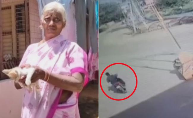 Miscreant Gold Chain Snatch From Woman At Gannavaram - Sakshi