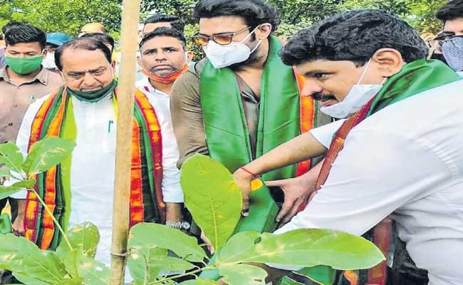 Actor Prabhas Adopted Forest Area Near Hyderabad - Sakshi