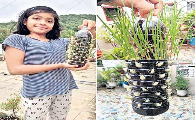 Garlic Farming In Plastic Bottles - Sakshi