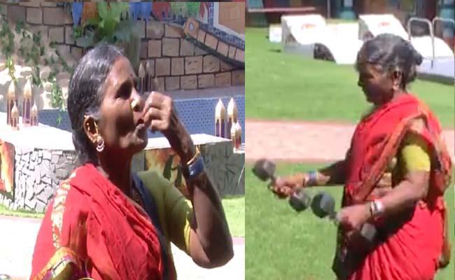 Bigg Boss 4 Telugu: Gangavva Punch To Dethadi Harika - Sakshi