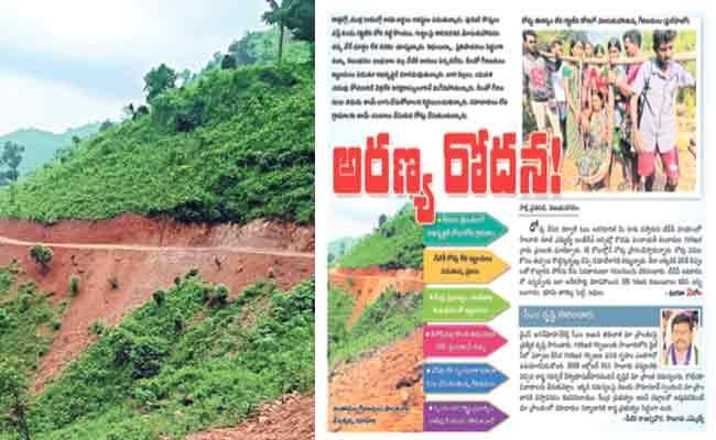 Government Official React On Chintamala Village Tribals Road Construction - Sakshi