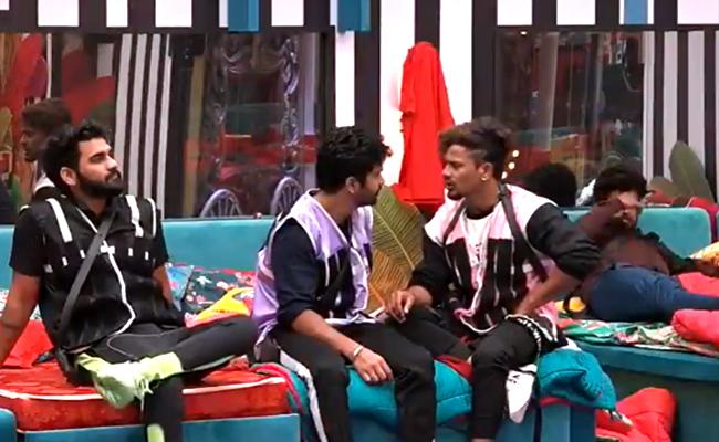 Bigg Boss 4 Telugu: Who Will Has Heighist Coins In Task Till End - Sakshi