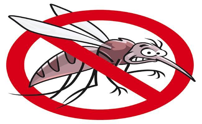 Dengue Fever cases under control in AP - Sakshi