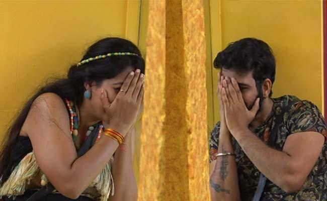 Bigg Boss 4 Telugu: Noel Sean As Sixth Captain But Not Get Immunity - Sakshi