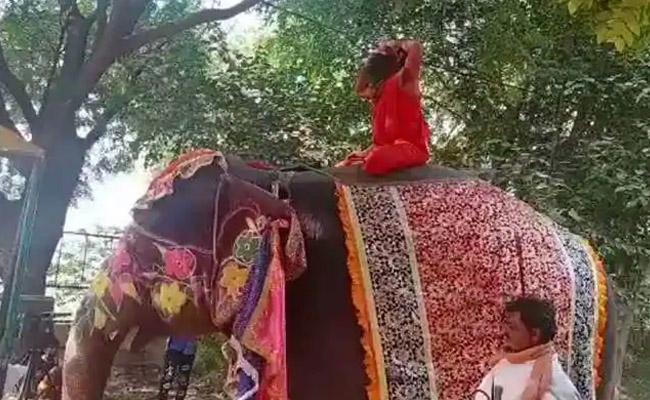Baba Ramdev falls off elephant while performing yoga at Mathura camp - Sakshi