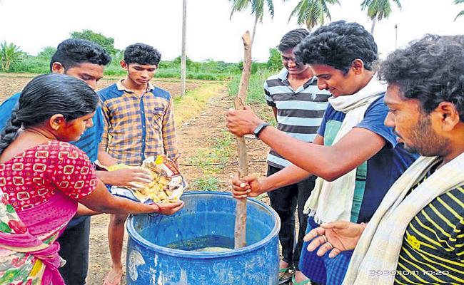 Nature Farming Of Graduates In Prakasam district - Sakshi