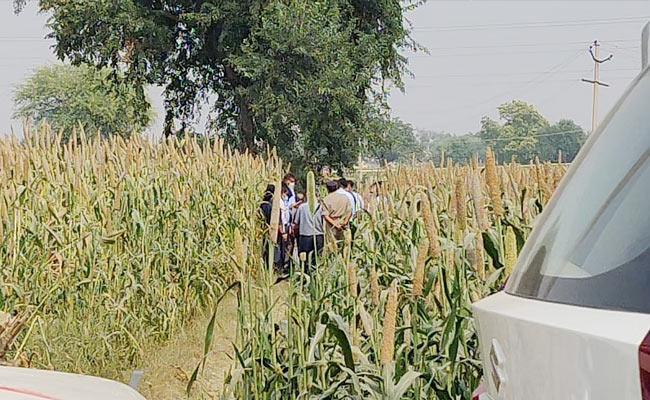 Farmer Losses Crop Due To CBI Investigation In Hathras Crime Scene - Sakshi